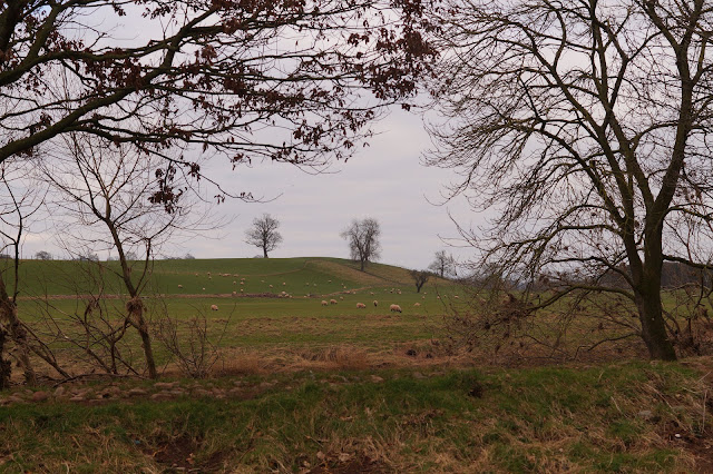 circular walk to Edenhall