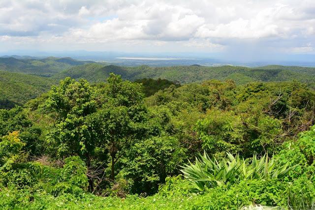 une vue du parc de Doi Luang