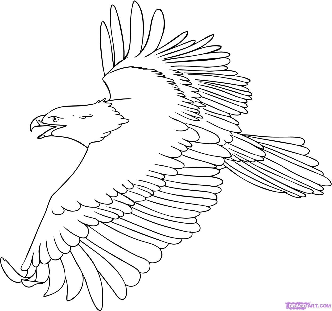 Kumpulan Gambar Kartun Burung Garuda
