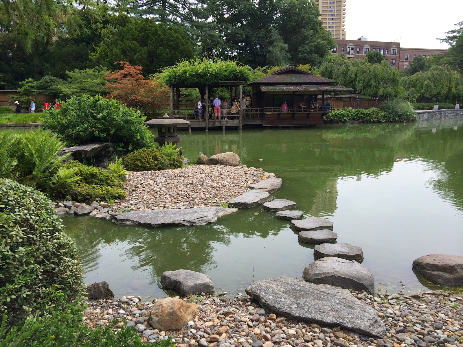 My Zen Garden: Japanese Hill and Pond Garden