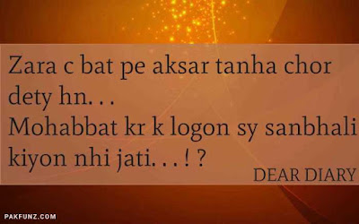 dear diary urdu poetry, love quotes, thoughts and silent words 29