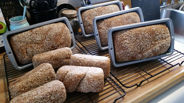 Our Dave's Killer Bread Style Super Seeded Daily Bread. Whole grain and delicious!
