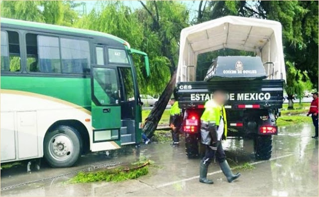 Paseo Tollocan en Toluca