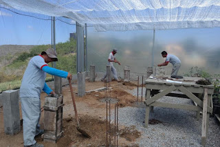 Prefeitura do CES/UFCG realiza trabalho de revitalização das casas de vegetação do campus de Cuité