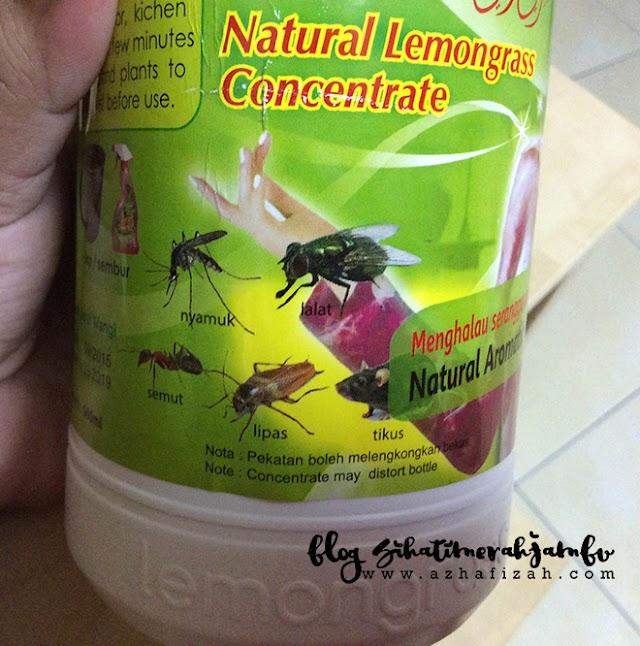 Cara Halau Semut, Lipas, Tikus, Nyamuk, Lalat dan Serangga Lain Dengan Berkesan