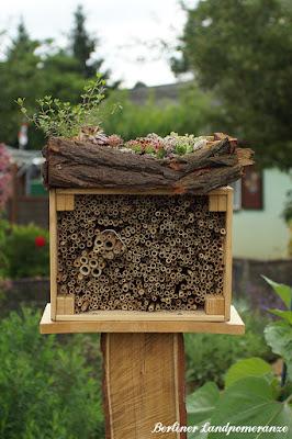 Wildbienenhotel mit Dachbegrünung