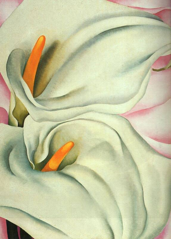 Two Calla Lilies on Pink by Georgia O'Keeffe
