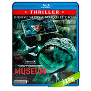 Museum (2016) BRRip 720p Audio Latino-Japones