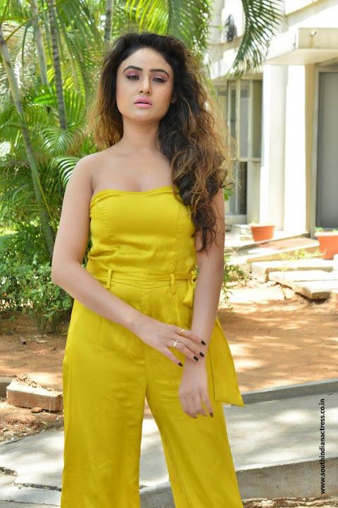 Sony Charishta at Mela movie Teaser Launch