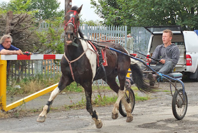 Are you going to Brigg Horse Fair 2016 - to be held on Friday, August 5th? Picture seven on Nigel Fisher's Brigg Blog