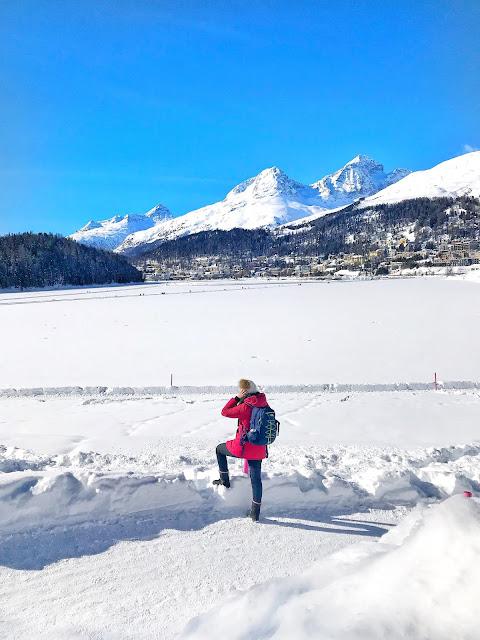 Trenino Rosso del Bernina informazioni utili