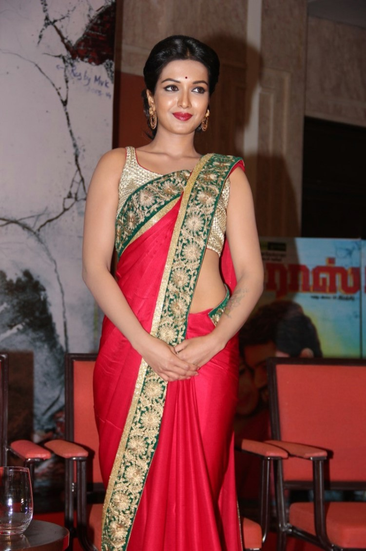 Catherine Tresa Latest Hot Stills In Red Saree