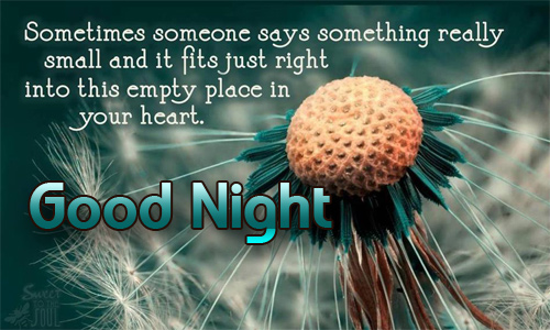 Good Night Flowers Images with Quotes 1