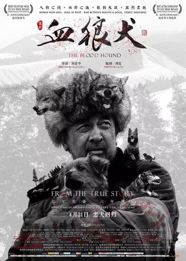 Xem Phim Chú Chó Anh Dũng  2017