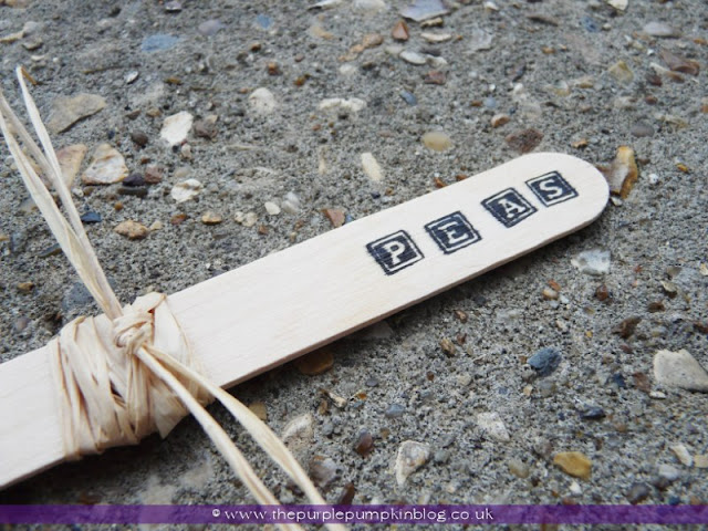 Stamp Your Own Plant Markers at The Purple Pumpkin Blog