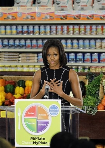 Michelle Obama Healthy Food Plate