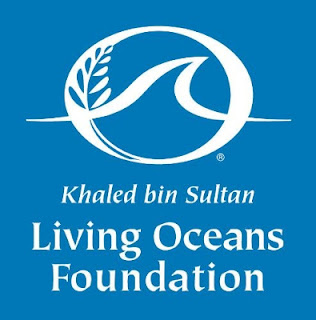 International Art Competition by Khaled bin Sultan Living Oceans Foundation