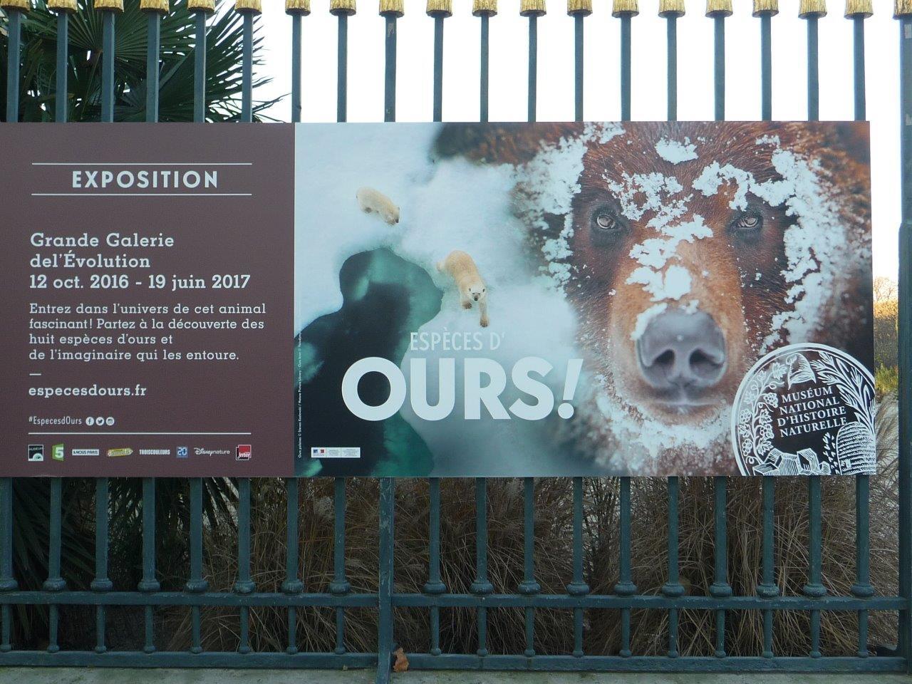 La caborne de l 39 ourse paris exposition esp ces d for Expos paris novembre 2016