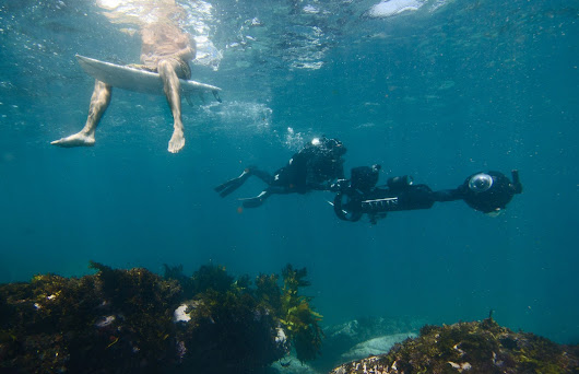 Sydney's underwater world is coming to Street View on Google Maps