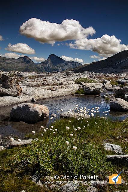 Panorama dalla morena del ghiacciaio del basodino