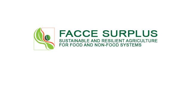 Logo FACCEJPI