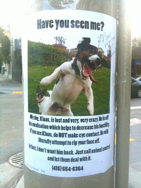 Lost Missing and Found Posters The Funny Side Kuriositas – Make Missing Poster
