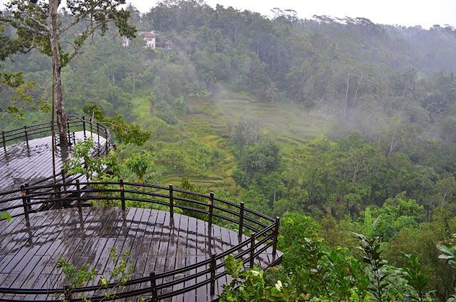 Bali Pulina Plantation