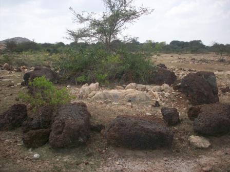 Megalithic burials in Pudukottai