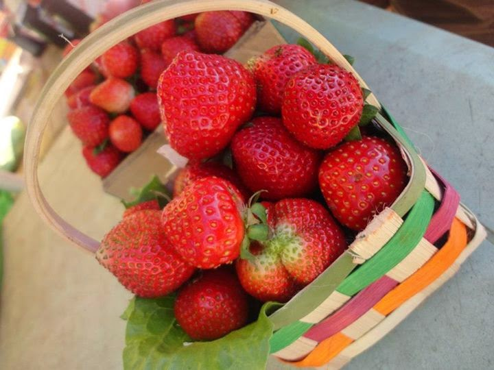 Strawberries in Baguio