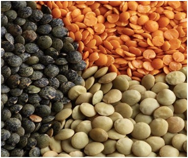 tidingsbuzz english and hindi name of cereals and pulses