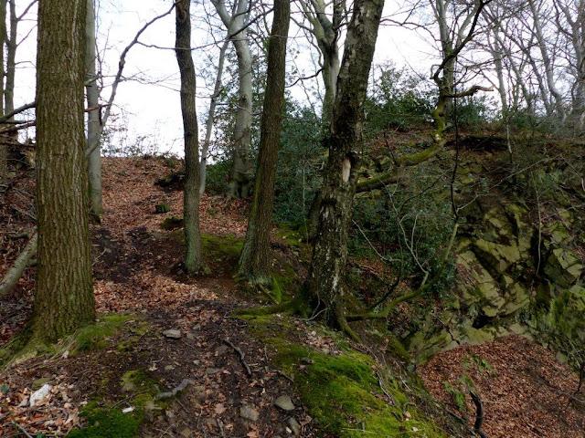 Wandern Ruhrgebiet Ruhrpott Wanderroute Hunderunde Velbert Hattingen Ruhr Wald