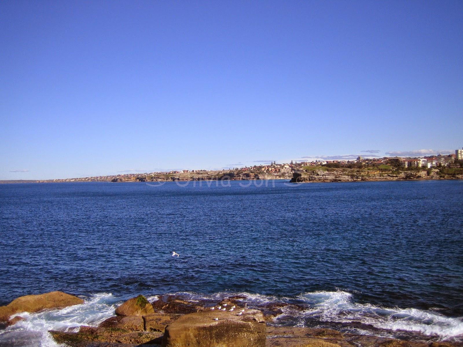 Bondi-Coogee Walk, Sydney, Australie