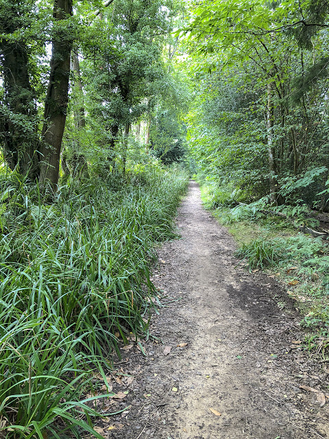 Path from Marden Hill to the Secret Lake, 19 August 2018