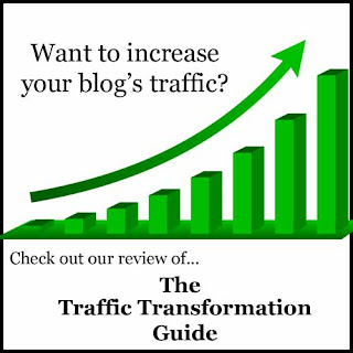 The Traffic Transformation Guide by Lena Gott