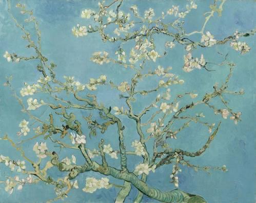 Amendoeira em Flor, pintura de Van Gogh.