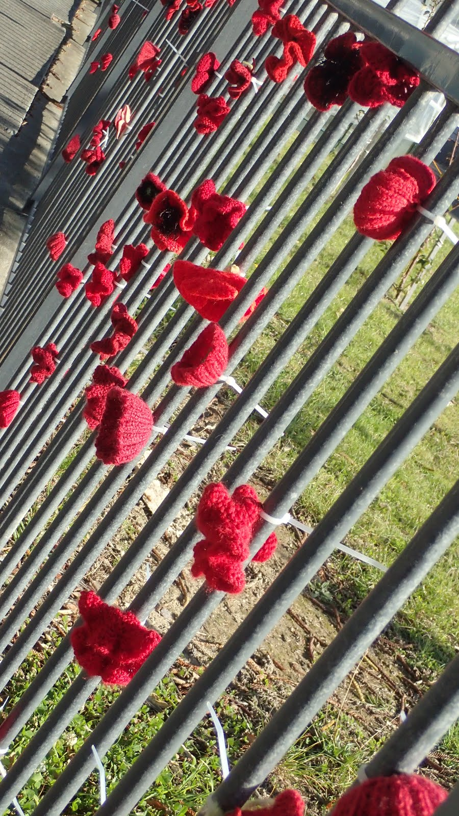 Crocheted poppies on a school fence, Anzac Day 2017