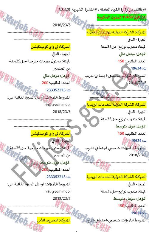 بوابة الوظائف الحكومية تعلن عن 1000 فرصة عمل للشباب بمختلف المحافظات