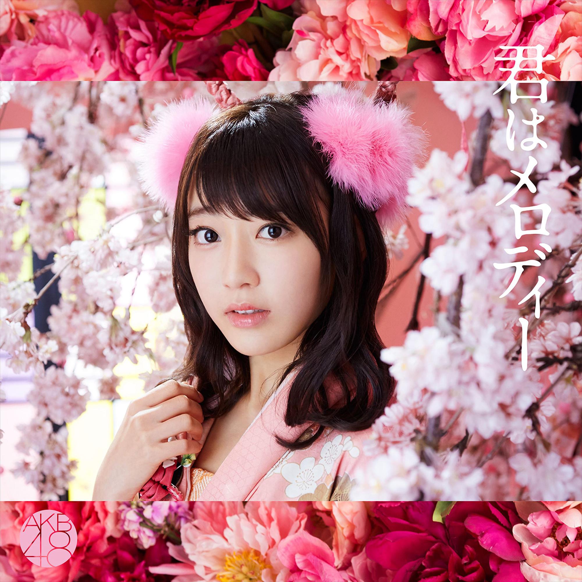 Art Work Japan: AKB48 - 君はメロディー