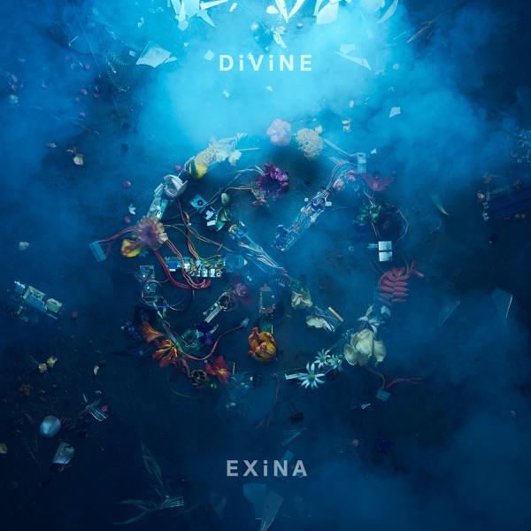 EXiNA - DiViNE