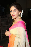 Anu Emanuel Looks Super Cute in Saree ~  Exclusive Pics 057.JPG