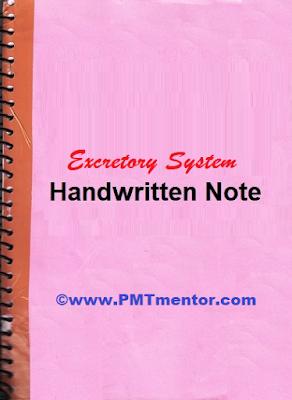 excretory-system-note
