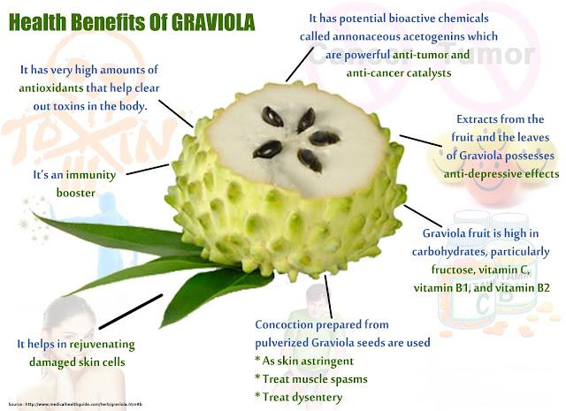 Apakah Anda Pernah Mendengar Tentang Graviola?