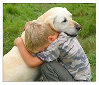 pensamientos con reflexiones,pensamientos o reflexiones,poesias para niños,niño,perro,niño perro,niño y su perro,cuento niño y su perro,historia niño y su perro,historia niño perro,enseñanza niño y perro,enseñanzas niño perro,polio,ayudas niños,ayuda niño,predicas niños,predica niño