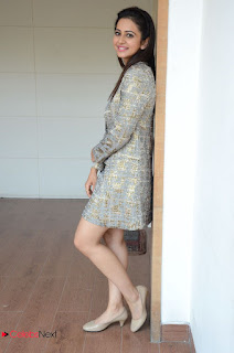 Rakul Preet Singh Latest Picture Gallery in Stylish Short Dress at Sarrainodu Interview ~ Celebs Next