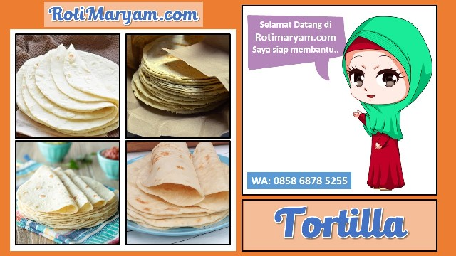 Supplier Kulit Tortilla Terdekat, Supplier Kulit Tortilla Terdekat, Supplier Kulit Tortilla Terdekat, Supplier Kulit Tortilla Terdekat, Supplier Kulit Tortilla Terdekat,