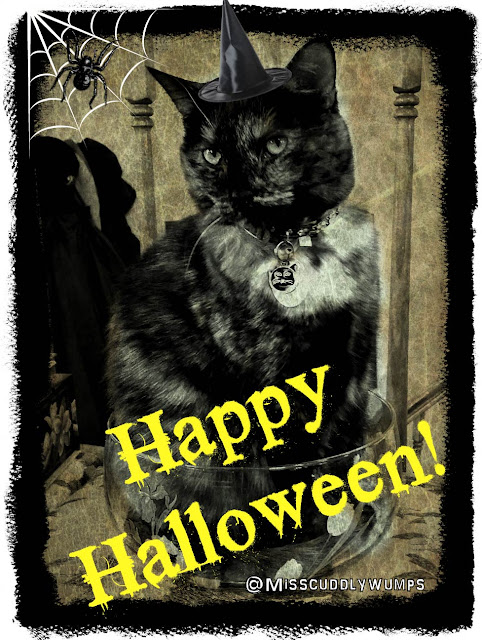 Caturday Art: Happy Halloween