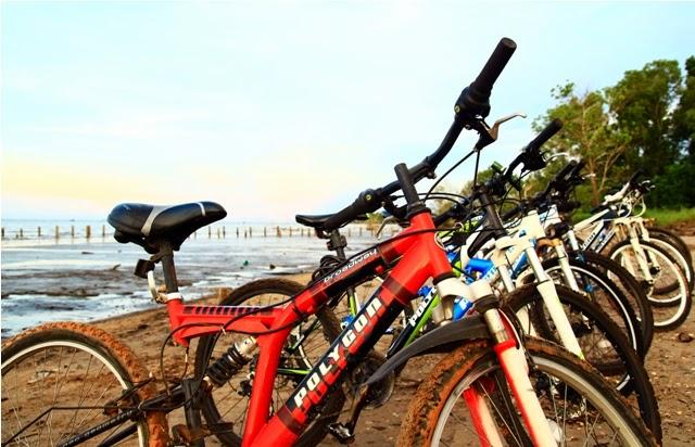 Suasana Pantai Tanjung Limau sebelum penanaman Mangrove