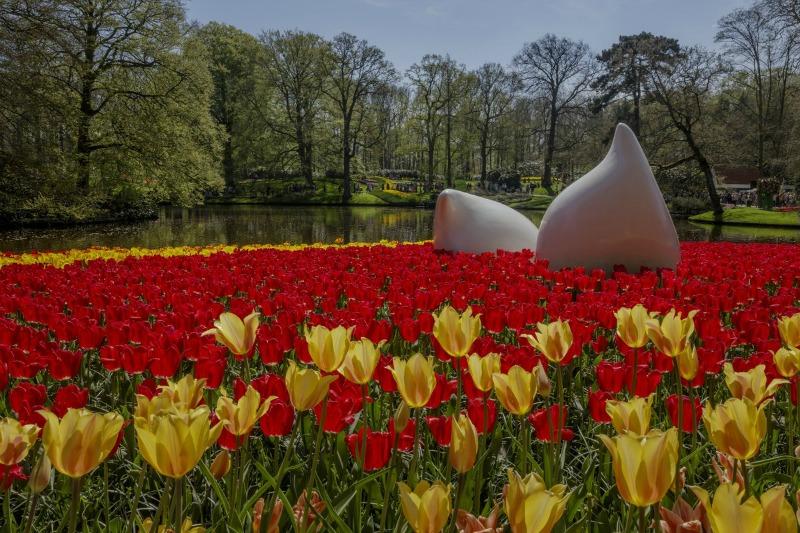 Tulipanes y esculturas