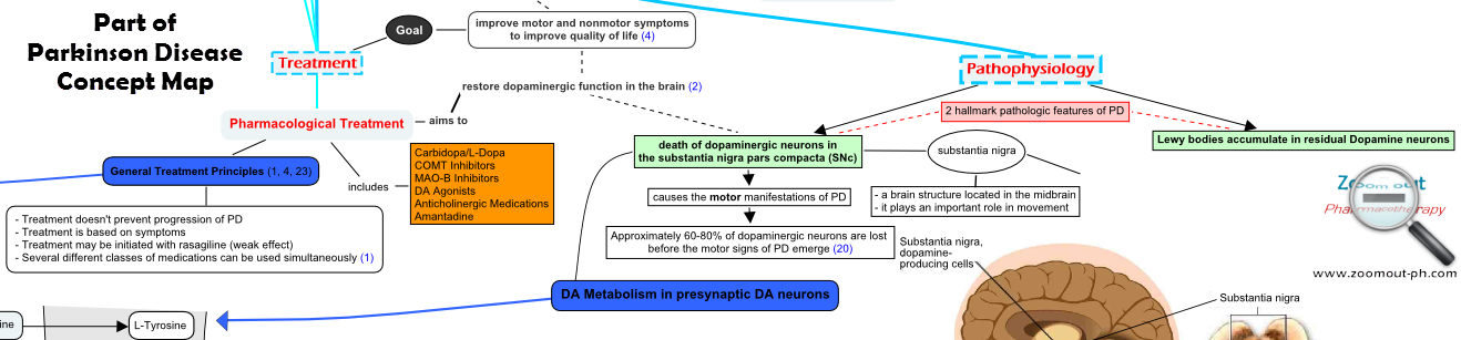 Part of Parkinson Disease Concept Map - Pathophysiology and Treatment of Parkinson Disease
