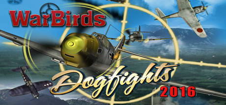 WarBirds Dogfights 2016 PC Game